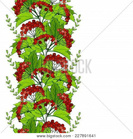 Seamless Slavic Ornament With Viburnum. Pattern With Bunches Of Red Berries. Vector