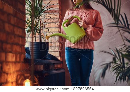 Young Charming Brunette Watering Potted Plant Standing In A Room With Loft Interior.