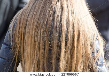 Girl With Long Hair In A Jacket On The Nature .