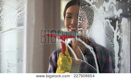 Good Wife With Pleasure Cleaning House And Washing Room Windows, Order At Home, Stock Footage