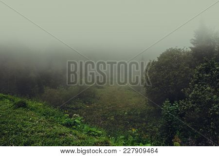 Morning Fog In Mountains Meadow. Mysterious Spring Nature Landscape With Forest On Mountain Hill, Vi