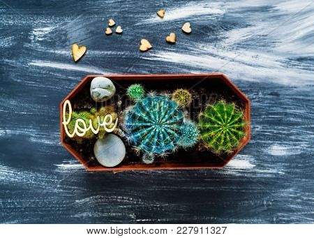 Decorative Cacti On A Blue Background With Small Wooden Hearts, Top View, Blank Space For Text