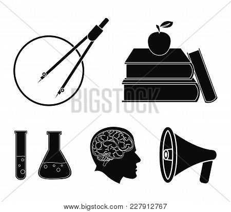 Books, An Apple, A Man's Head With A Brain, Test Tubes With A Reagent, A Compass With A Circle. Scho