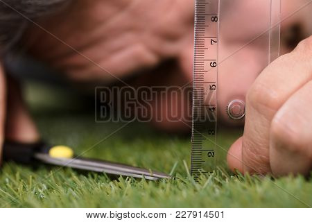 Close-up Of A Man Using Measuring Scale While Cutting Grass With Scissors