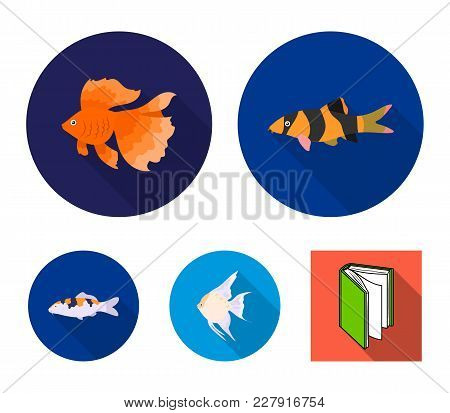 Discus, Gold, Carp, Koi, Scleropages, Fotmosus.fish Set Collection Icons In Flat Style Vector Symbol