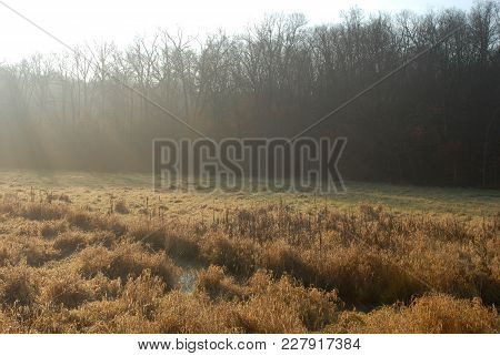 A Wet Meadow In Missouri With Rays Of Sunshine Raining Down On It.