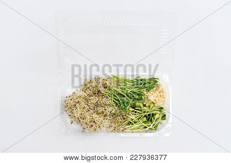 Different Types Of Micro Greens In Plastic Container On White Background. Healthy Eating Concept Of