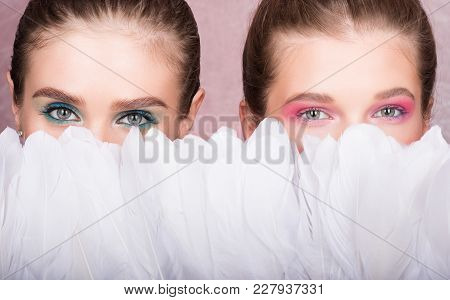 To Hide The Face Behind The Feathers. Two Beautiful Young Women With Makeup. Neutral Pink Background