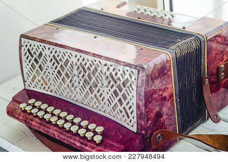A Little Accordion, Harmonic, Musical Instrument, Music Repair White Keys