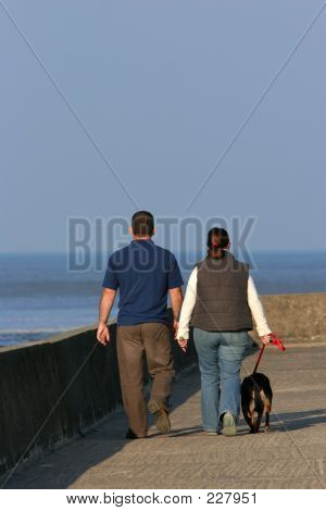 poster of the rear view of a couple walking their dog on a promenade with the sea in the distance. (sea out of focus)