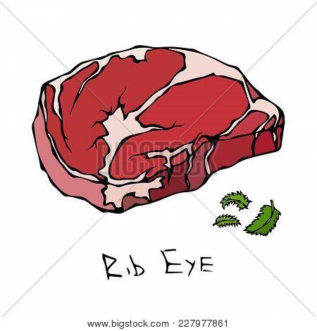 Most Popular Steak Rib Eye. Beef Cut. Meat Guide For Butcher Shop Or Steak House Restaurant Menu. Ha