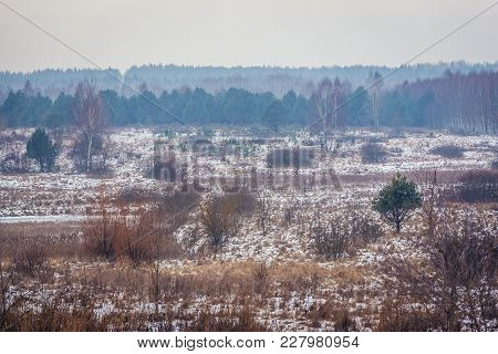 Winter Landscape In Kruszyniany, Small Village In Podlasie Region Of Poland