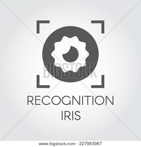 Recognition Iris Biometric Scan Black Flat Icon. Identity Scanning Retina Logo. Verification Modern