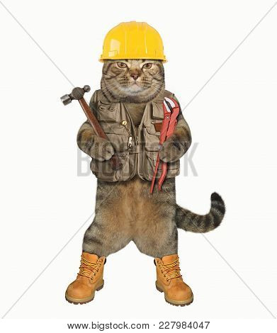 The Cat Worker Holds A Hammer And A Wrench. White Background.