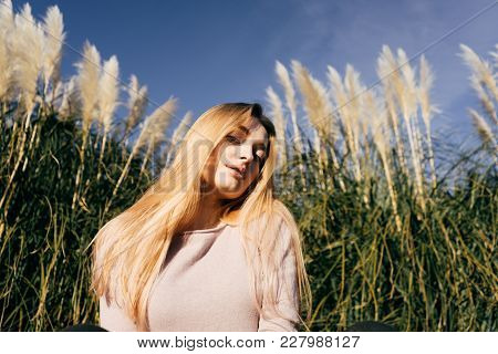 Attractive Beautiful Blonde Model Girl Posing In A Green Field, In The Sun, Under A Blue Sky