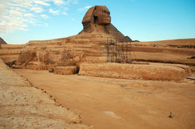 Egypt. Cairo. Giza. View of the fully unearthed Sphinx.