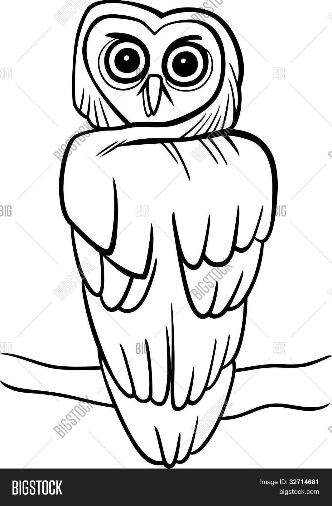 Vector y foto Buho De Dibujos Animados Para | Bigstock