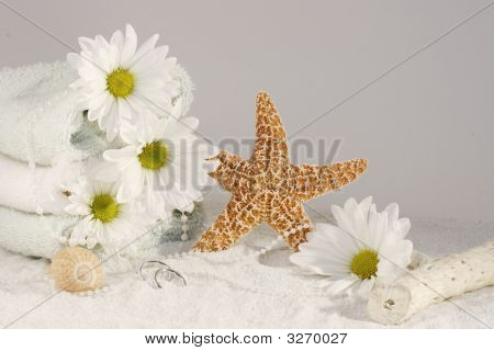 Starfish Spa Still Life
