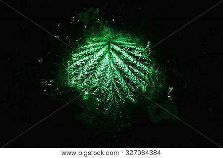 Green Leaf Disgregation On Black Background - Environment Decadence