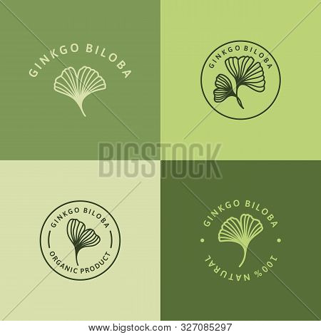 Set Of Ginkgo Biloba Leaf Green Badge And Icon In Trendy Linear Style - Vector Round Logo Of Gingko