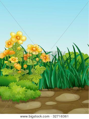 Illustraiton of an empty garden scene