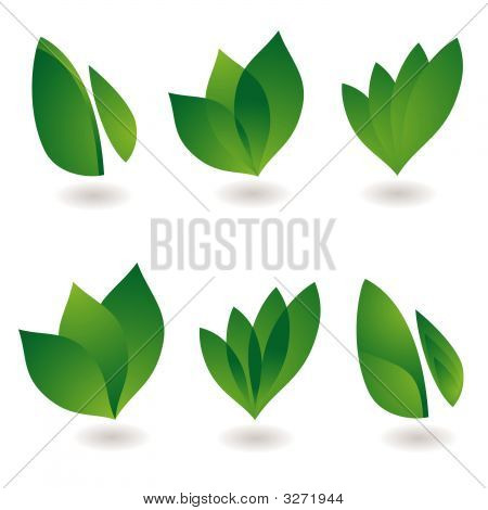 poster of collection of six environmental leaf designs with shadow