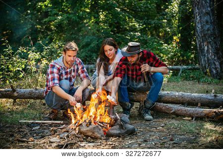 Group Of Friends Camping With Marshmallows Over A Camp Fire. Spring Or Autumn Camping. Picnic Time.