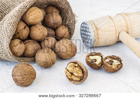 Small Burlap Bag With Natural Unbleached Walnuts (juglans Regia) And Wooden Mallet On A Withe Rough