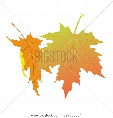 Falling Yellow And Orange Leaves Of Maple Tree. Hello Autumn, Bye Summer. Seasonal Sale Element Desi