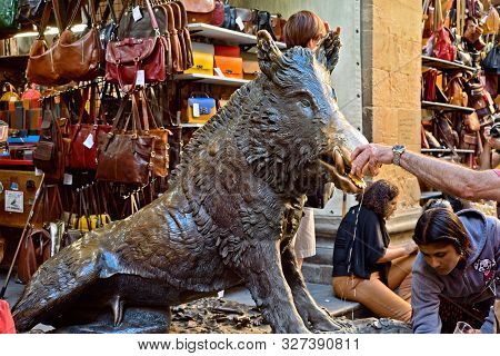 Florence, Italy - May 31, 2019: A Tourist Rubs The Snout Of The Bronze Boar For Luck At The Fontana