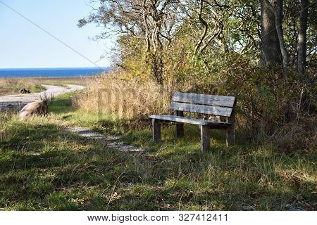 Wooden Bench By The Coast At The Island Oland In Sweden