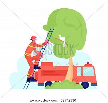 Brave Fireman In Red Protective Uniform And Helmet Climbing Up Truck Ladder To Save Cat From High Tr