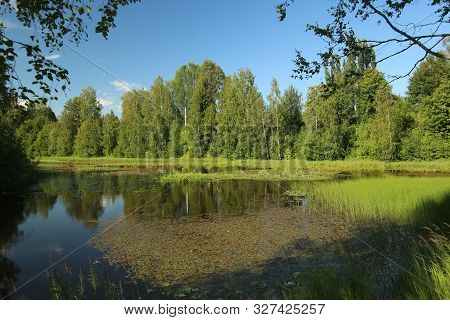 Shallow Lakes At The Island Rovon In Skelleftea
