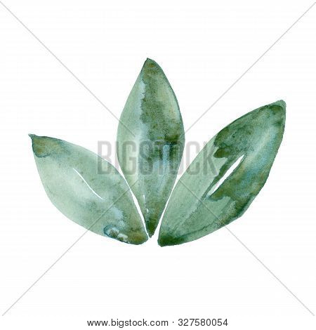 Watercolor Green Leaf Natural Ecology Symbol Isolated On White Background. Hand Painting Illustratio