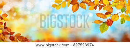 Colorful Autumn Background In Panoramic Format, With Red, Yellow And Green Leaves Framing Blue Bokeh