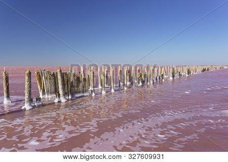 Beautiful Pink Lake Sasyk Sivash In The Western Part Of The Crimean Peninsula Near Yevpatoria On A S