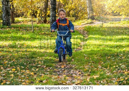 Five Years Old Little Boy Rides A Bicycle In The Autumn Park.
