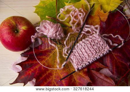 Knitting Concept. Autumn Background With Knitting Needles And Pink Knitting On Multicolored Maple Le