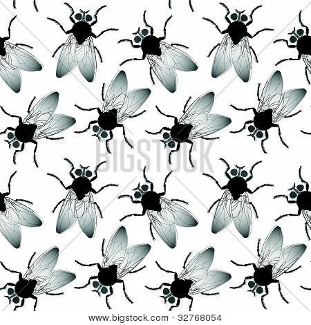 Fly Seamless Texture