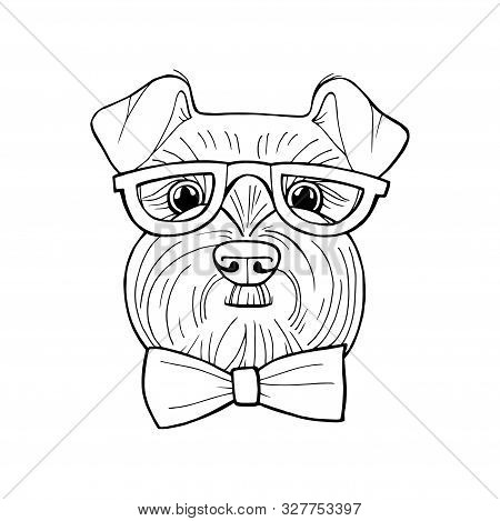 Coloring Book Page Schnauzer. Dog Vector Hand Drawn Illustration