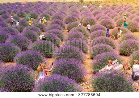 Isparta, Turkey - June 30, 2019: Tourists Shooting Photos Of Lavender Bushes In A Village On A Sunny
