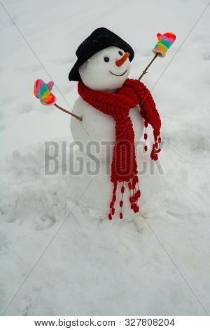 Snowman In A Scarf And Hat. Snowman And Snow Day. Snowman Is Standing In Winter Hat And Scarf With R