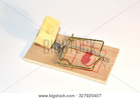 Free Cheese In A Wooden Mousetrap. Mousetrap With Cheese. Dangerous Trap.