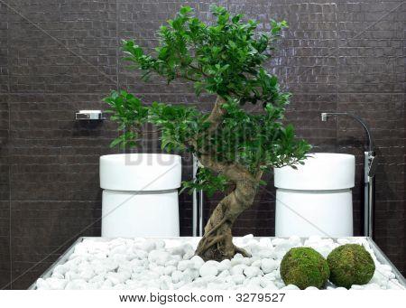 Bonsai Bathroom