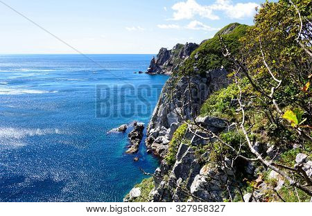 Beautiful Sea Bay Aerial View. Along Waterside Are High Crags, On Top Of Which A Green Forest. Pacif