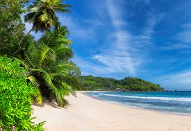 Panoramic View Of Sunny Beach With Palm Trees And Turquoise Sea In Seychelles. Summer Vacation And T