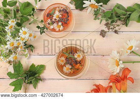 Set Of Medicinal Plants, Chamomile And Mint Herbal Tea, Alternative Medicine Concept, Background, Me