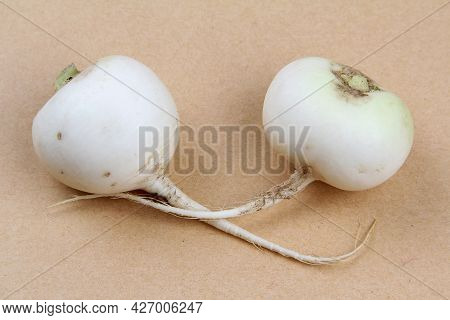Two White Daikon Radishes Are Lying On Craft Paper.harvesting A Natural Fresh Crop, Rich In Vitamins