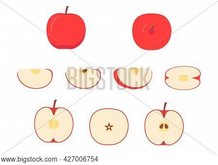 Red Apple Whole, Cut Half, Piece, Part And Slice Chopped Of Fruit. Harvest Ripe Fruit Icon. Popular