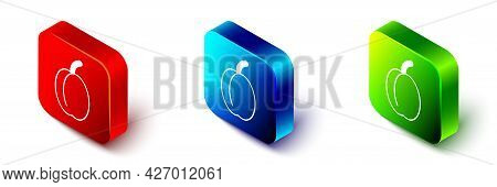 Isometric Plum Fruit Icon Isolated Isometric Background. Red, Blue And Green Square Button. Vector